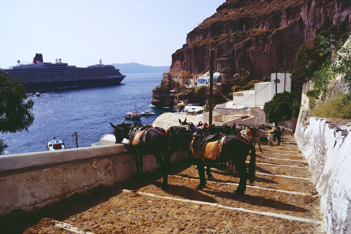 cunard queen victoria santorini donkeys