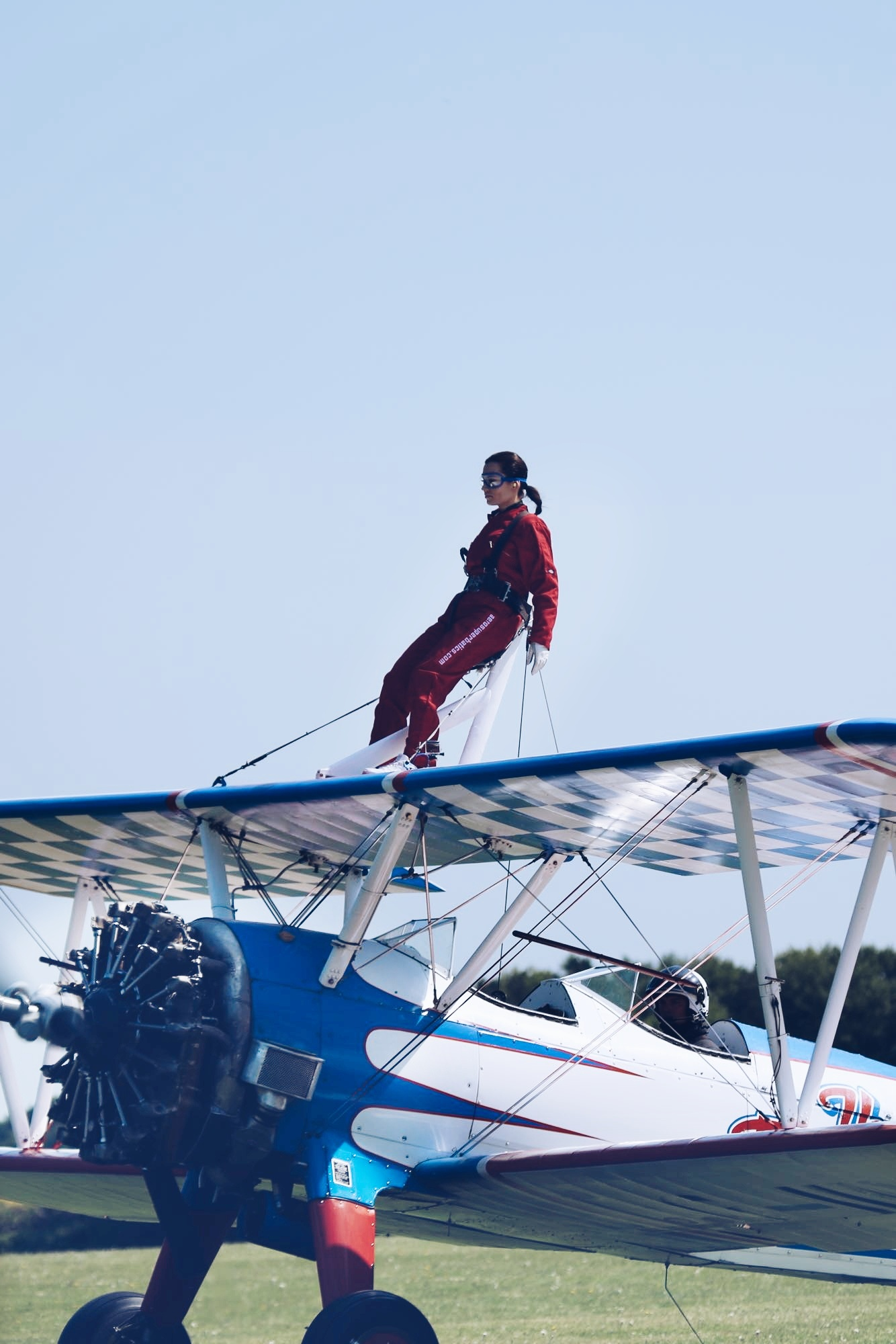 professional wing walkers