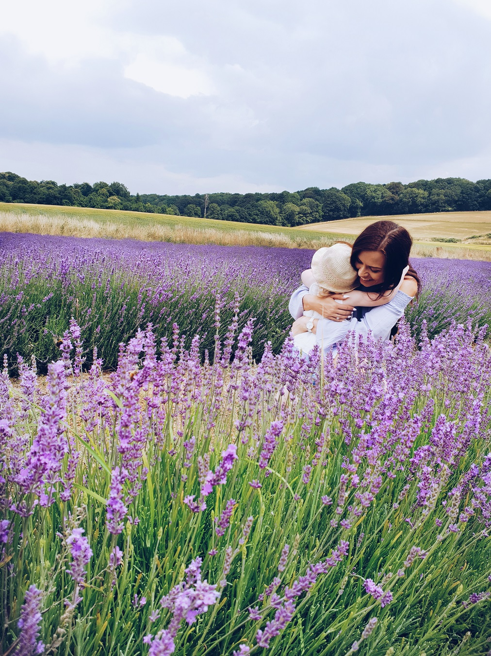 lavender properties and benefits