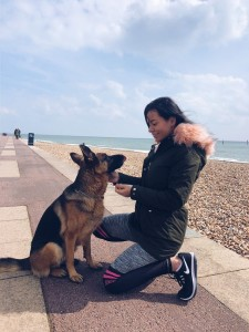dog training with love and attention