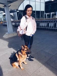 dog training heathrow airport