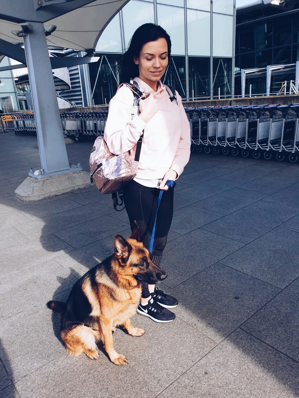 dog training heathrow airport